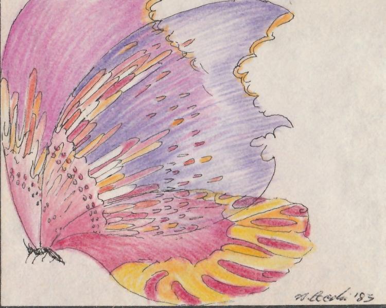 Farfalla. 1989. China  e pastelli su carta. cm. 21X22,5. Copyright © A. Cocchi 1989
