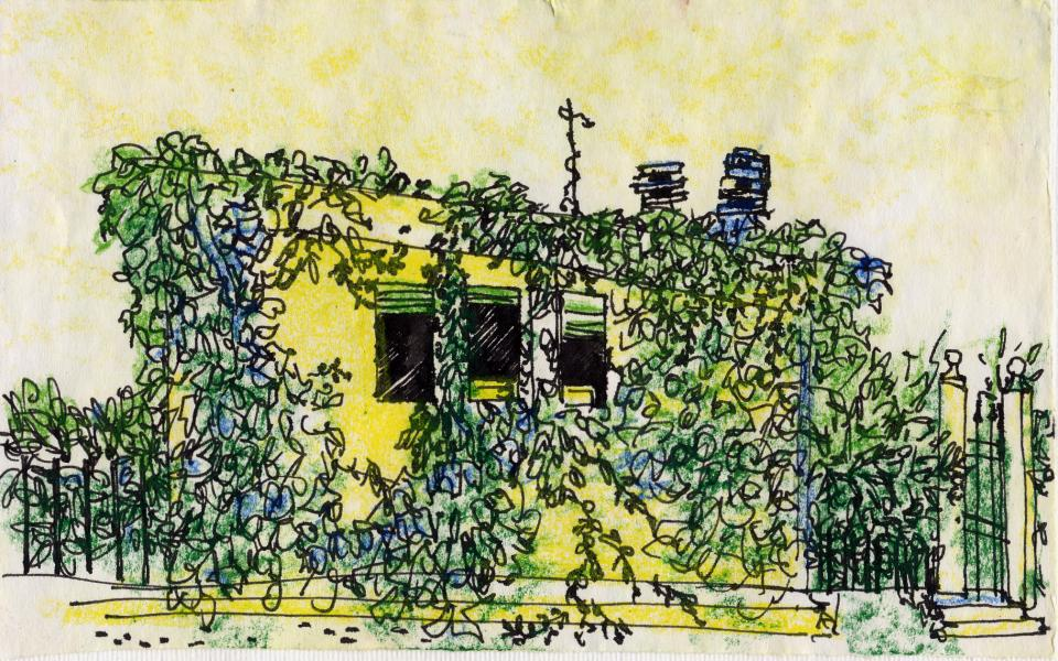 Finestre tra l'edera. 2001. China e pastelli a cera su carta. cm. 21X29,7. Copyright  A. Cocchi ©2001