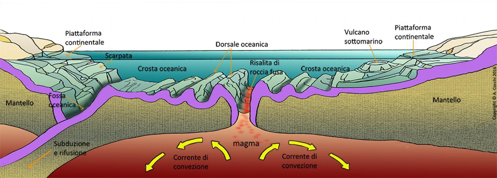Fondale oceanico. Orogenesi. 2017. Illustrazione digitale. Copyright A. Cocchi © 2017