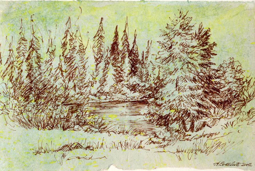 Il lago dei pini. 2002. China seppia e acquerello. cm. 21X29,7. Copyright  A. Cocchi ©2002